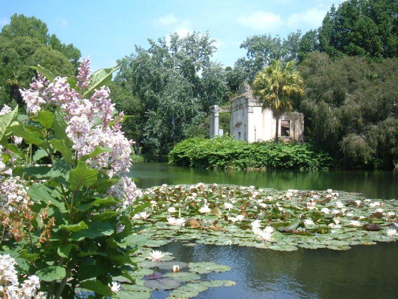 Italian botanical heritage reggia di caserta - Giardino in inglese ...