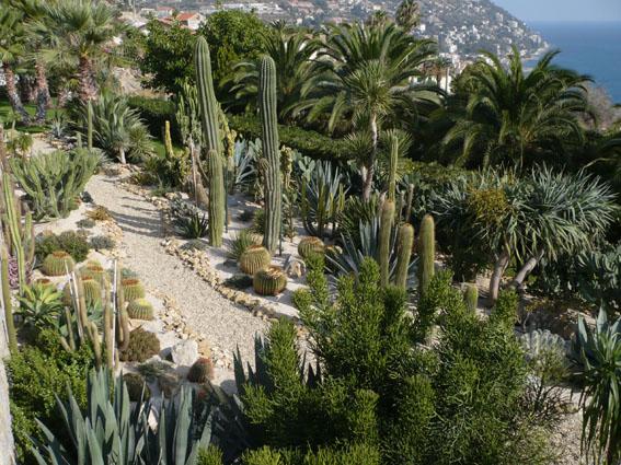 italian botanical heritage giardino esotico pallanca