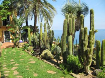 Italian botanical heritage giardino esotico pallanca for Decorer son jardin avec des pierres