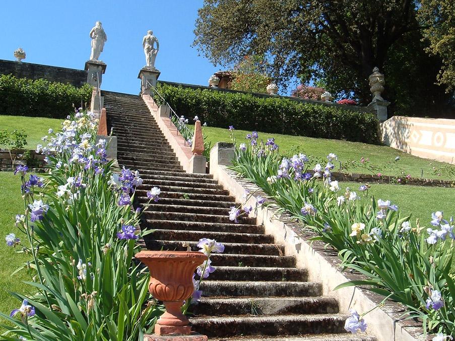 Italian botanical heritage giardino bardini - Terrazzamenti giardino ...