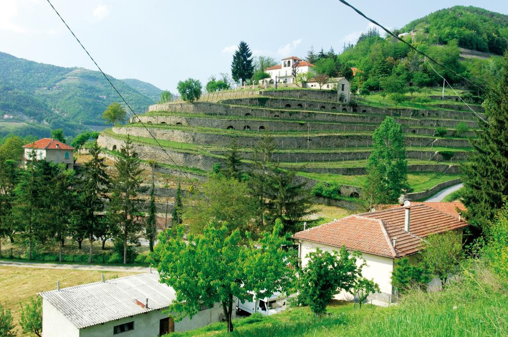 Terrazzamenti in collina 28 images terrazzamento per