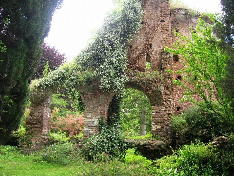 Italian botanical heritage giardino di ninfa - Il giardino di ninfa ...