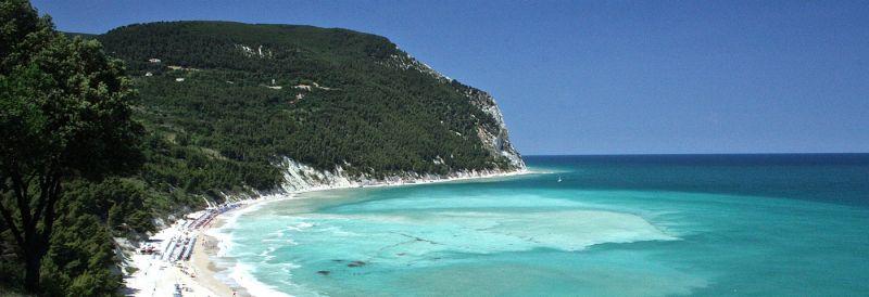 Italian Botanical Heritage  U00bb Spiagge Del Conero