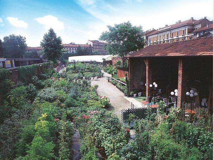 Italian botanical heritage fratelli ingegnoli for Ingegnoli piante